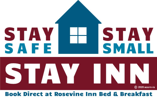 Stay Safe Stay Inn Logo