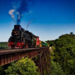 texas state railroad train ride