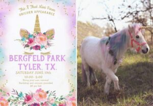 Poster for Bergfeld park Unicorn festival June 19,2021